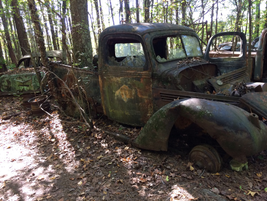 Old trucks are everywhere in the woods at Old Car City. Photo: Christina Hamner
