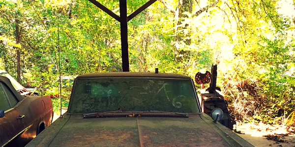 An old Pontiac Tempest waits patiently in an old shed. Photo: Christina Hamner