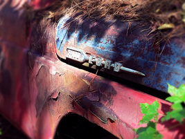 Ford fender detail. Photo: Christina Hamner