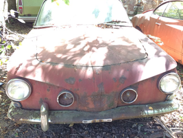 Not all cars in the yard are American -- or all that common. Like this oddball German model....