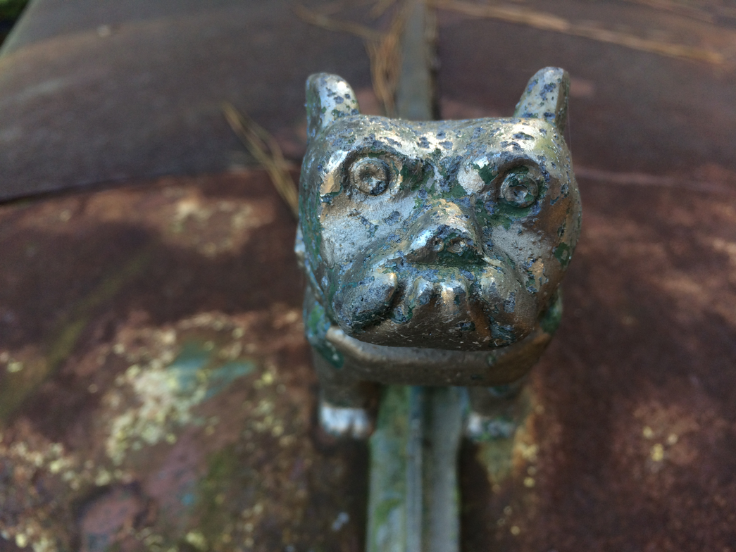 Where has this old Mack bulldog been, and what has it seen...? Photo: Jack Roberts
