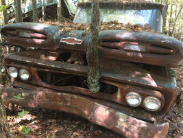 This mid-60s Chevy truck has sat so long a tree has grown through its grill. Photo: Jack Roberts