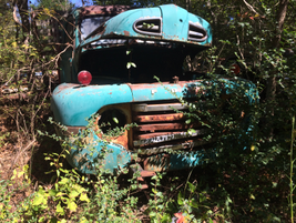 The fall sun gleams off a '40s vintage Ford pickup. Photo: Jack Roberts
