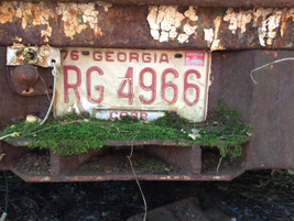 There are probably a fortune in old vehicle tags alone on the property. Photo: Jack Roberts
