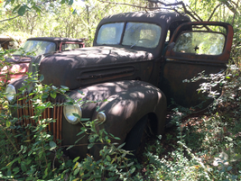 More than a few collectors would love to get their hands on this old truck. Photo: Jack Roberts