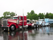 Some of the first trucks lined up for judging on Day 1 of the 32nd Annual Shell Rotella...