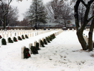 In addition to sponsoring and transporting the wreaths, Prime transported the company's veterans...