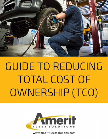 Guide to Reducing Total Cost of Ownership