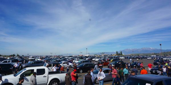 Dealers evaluate vehicles as they are lined up for sale at a California Manheim location.