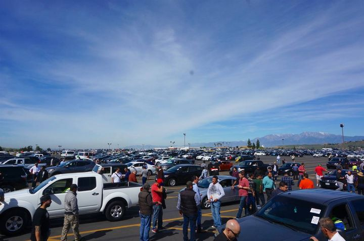 Dealers evaluate vehicles as they are lined up for sale at a California Manheim location. - Photo: Manheim