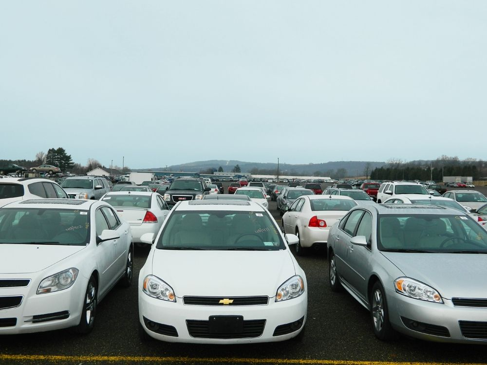State Line Auto Auction Sets Absolute Sale for GM to Celebrate 22 Years