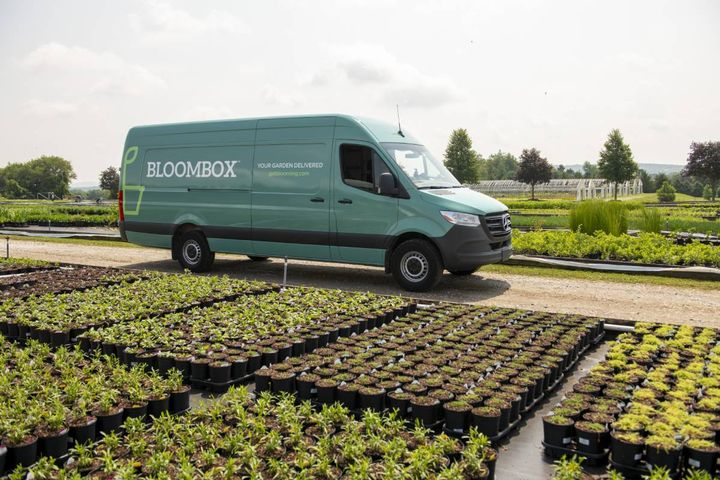 With an online and contactless service for people at home working in their yards, BloomBox saw incredible growth during the pandemic. - Photo: Avery Dennison Corporation.