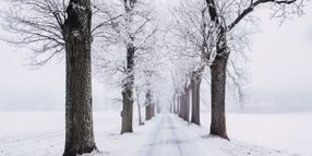 Staying Safe in the Winter with Telematics
