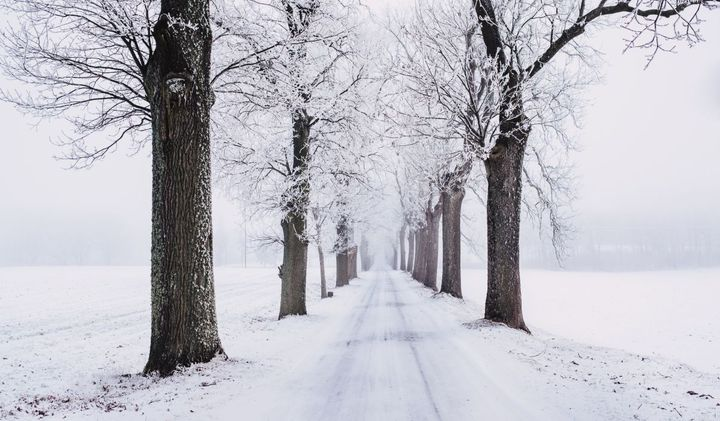 More than 70% of the nation's roads are in snowy regions, which receive more than 5 inches average snowfall annually, according to the U.S. Federal Highway Administration.  - Photo:freestocks.orgfromPexels