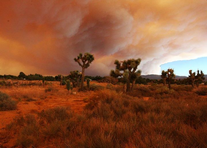Fires occur every year in California, with some years more deadly than others. This photo was from wildfires in 2009 in California. - Photo: Flickr/Rennett Stowefrom USA