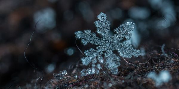 reparation is vital to staying alive during extended periods of heavy snowfall and freezing...