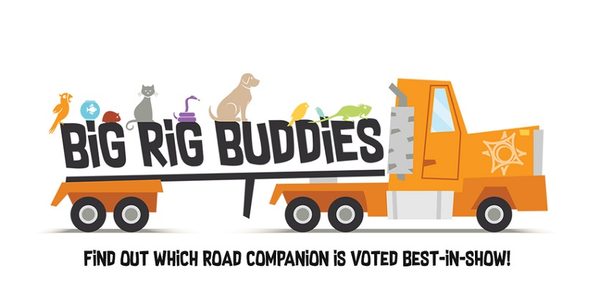 Omnitracs Launches 'Big Rig Buddies' Contest