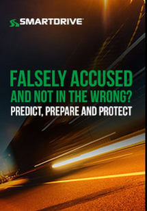 Falsely Accused and Not in the Wrong? Predict, Prepare, Protect